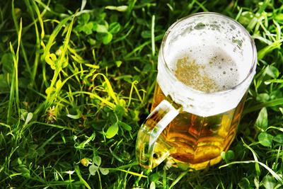 ein Bierglas steht im Gras